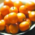 橘子橙子柚子 柑橘类水果有哪些区别